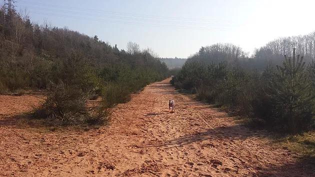 Balade Freyming - chemin Cyno'Logik