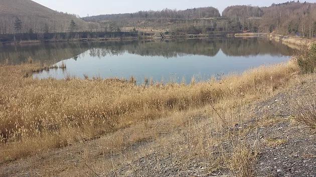 Balade Freyming - Accès au lac